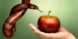 Змей, яблоко, искушение