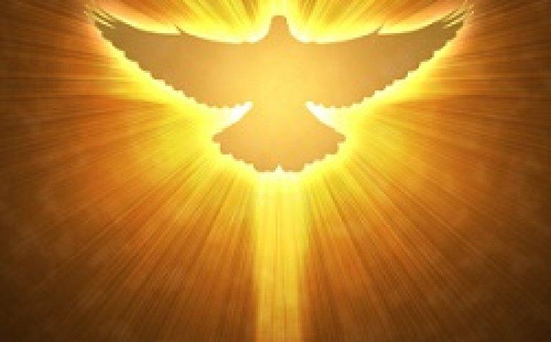 Дух святой голубь